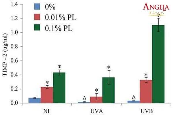 nghiên cứu khoa học về P. Leucotomos
