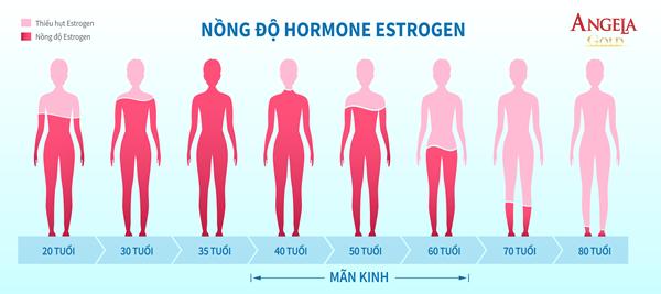 nồng độ Estrogen trong cơ thể